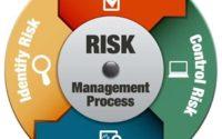 PMI RMP Risk Management Process